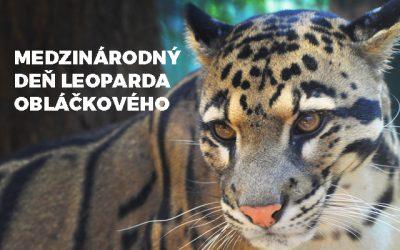 Medzinárodný deň leoparda obláčkového