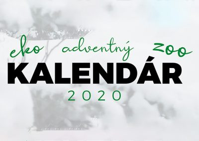 Adventný ZooEkoKalendár