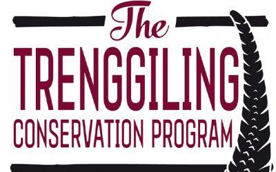 """Záchranný program """"Trenggiling Conservation Program"""""""