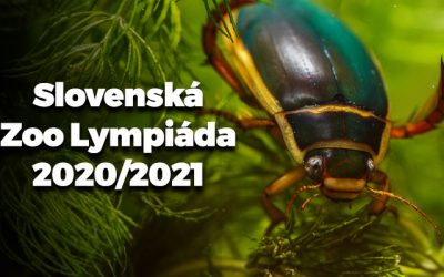 Zoolympiáda 2020/2021