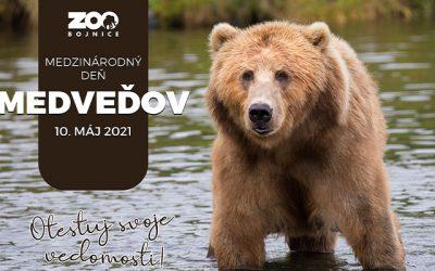 Medzinárodný deň medveďov