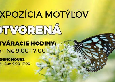 Expozícia motýľov otvorená!