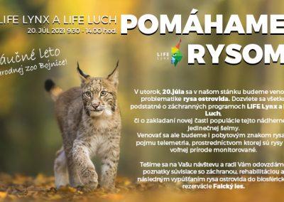 Pomáhame rysom – LIFE Lynx a LIFE Luch