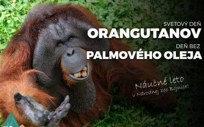 Svetový deň orangutanov a deň bez palmového oleja