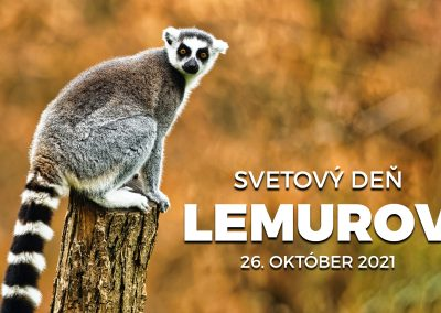 Svetový deň lemurov